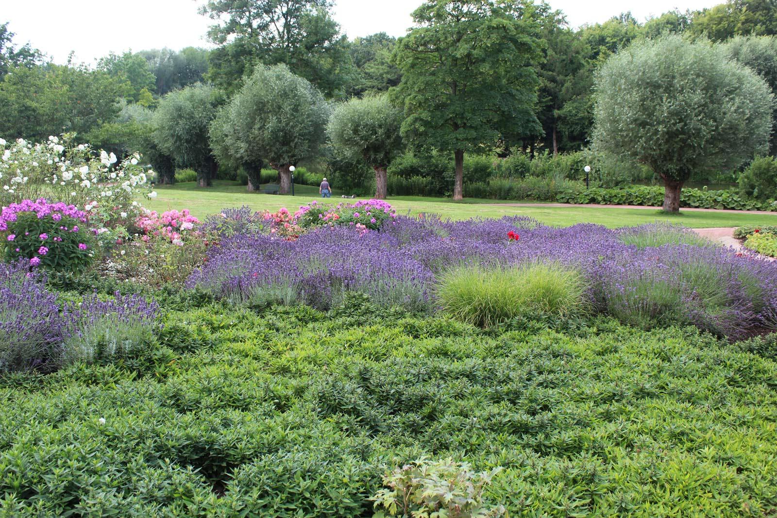 Rosengarten mit Blick auf den Kurparkteich